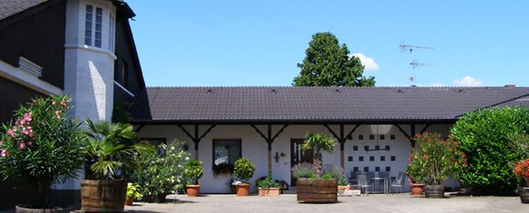 Weingut Acker - Martinushof