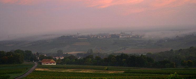 Weingut Battenfeld-Spanier
