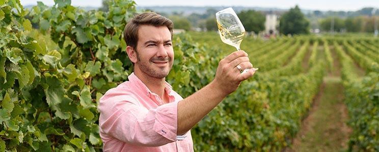 Weingut Bickelmaier