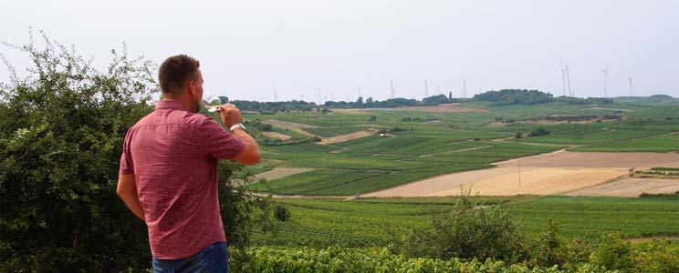 Weingut Daniel Mattern