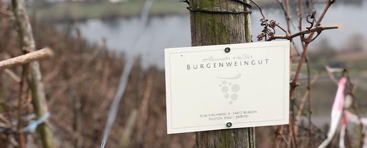 Burgenweingut