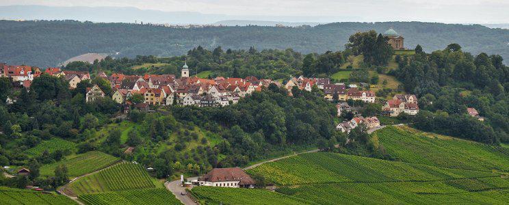 Collegium Wirtemberg: Reserve