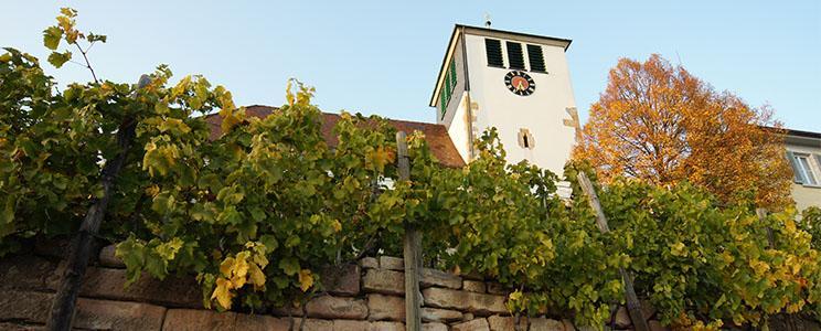 Weingut FRIED Baumgärtner: 0,25 L