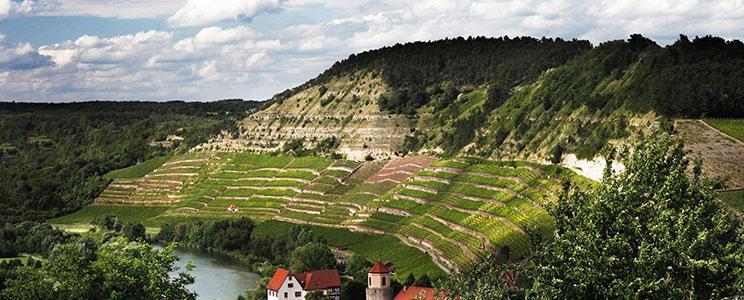 Weingut Fürst Löwenstein - Franken