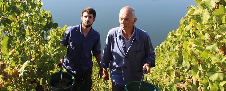 Weingut Gorges-Reinhard