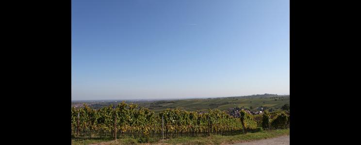Weinwerkstatt