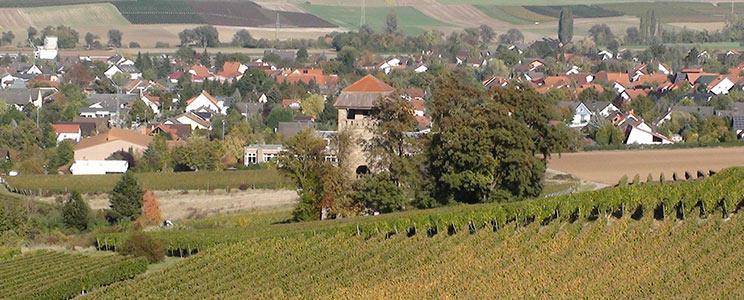 Weingut Kitzer