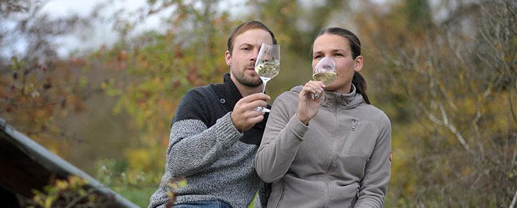 Weingut Kohlmann-Scheinhof