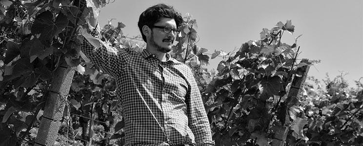 Weingut Lithos: Qualitätswein