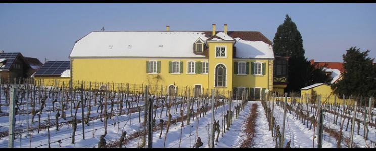 Weingut Winkels-Herding: Rotwein