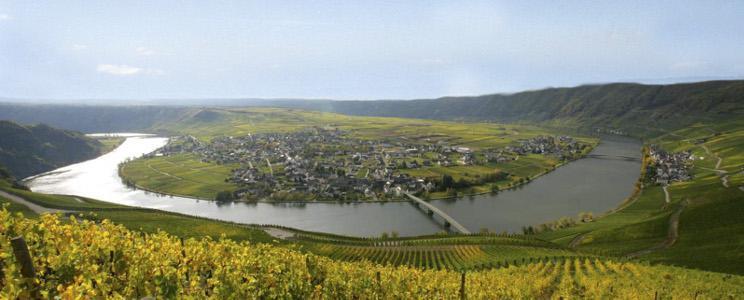 Weingut Lehnert-Veit