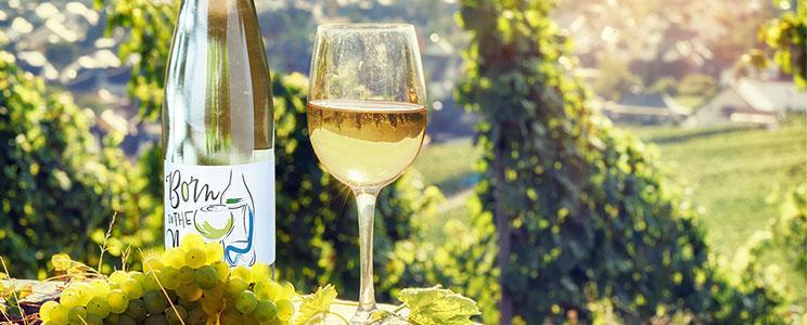 Weinmanufaktur Reitz