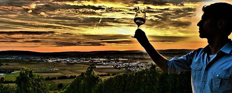 Weingut Steitz vom Donnersberg