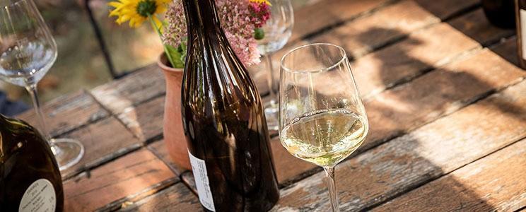 Weingut Seufert