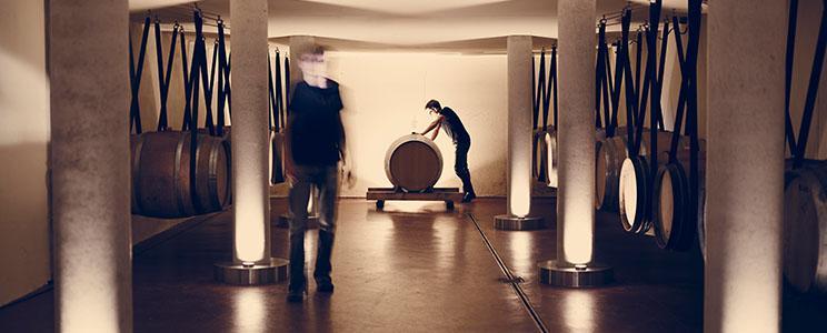 Weingut Siegloch: Deutscher Landwein