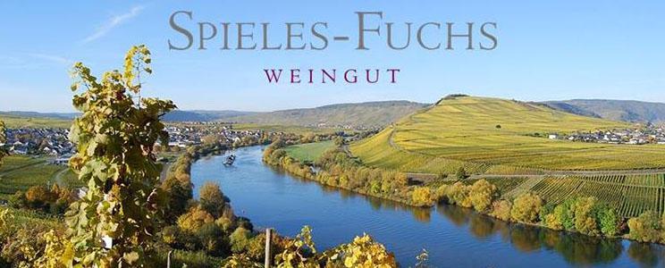 Spieles-Fuchs