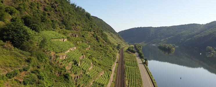 Weinbau Weckbecker