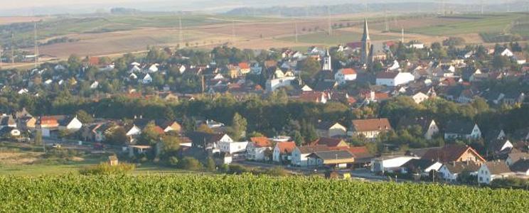 Weingut Schmidt-Kunz  (Seite: 2)
