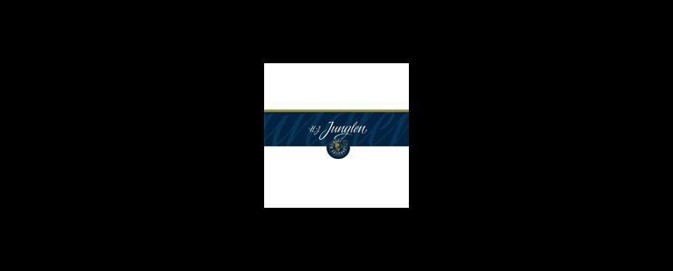 H.-J. Junglen