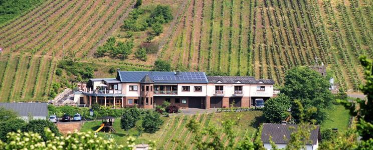 Weingut Zecherhof