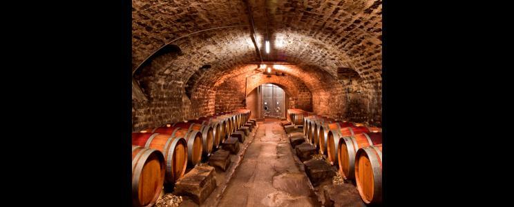 Weinparadies Freinsheim: Rotwein