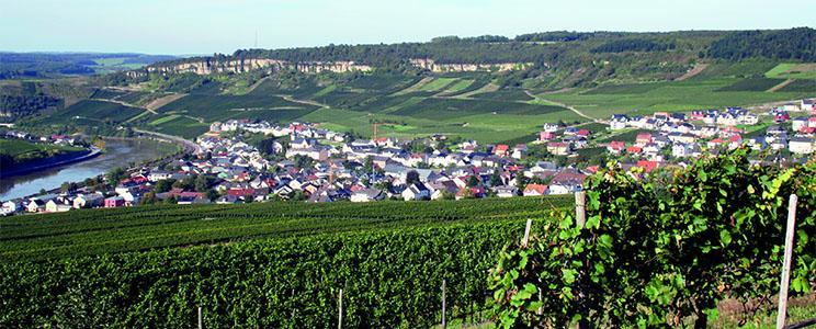 Weingut Bernd Frieden