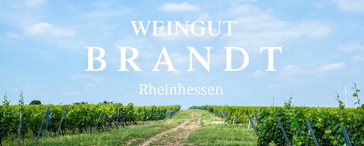 Weingut Brandt: Riesling