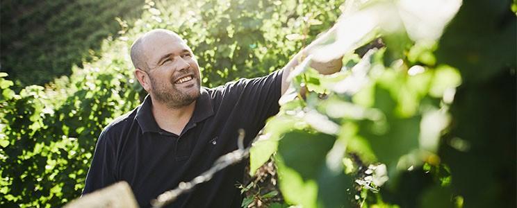 Weingut Claudius Eckes: Qualitätswein
