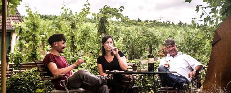 Weingut Carlsfelsen