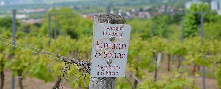 Weingut Burgberg Eimann & Söhne