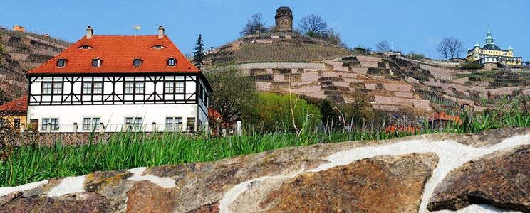 Weingut Hoflößnitz  (Seite: 2)