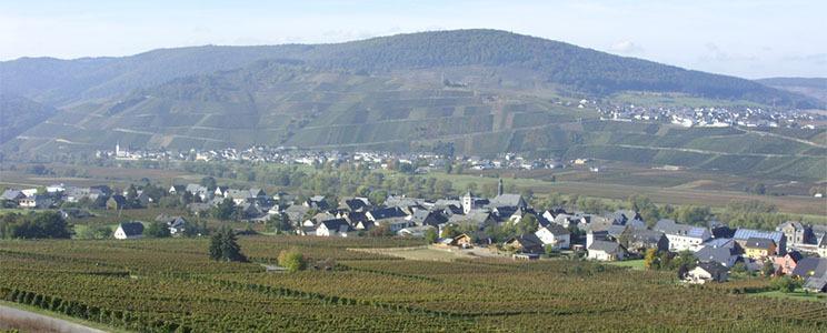 Weingut Kranz-Junk