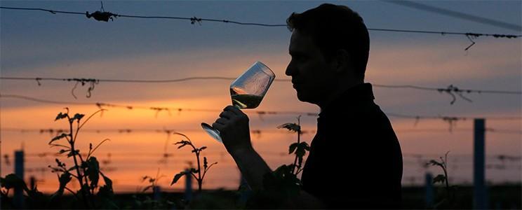 Weingut Langenwalter
