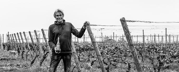 Weingut Stefan Molitor