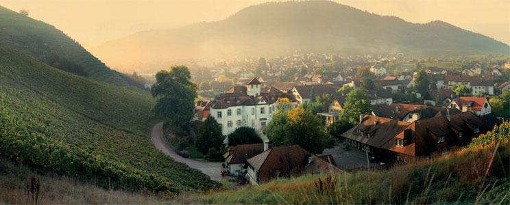 Schloss Neuweier