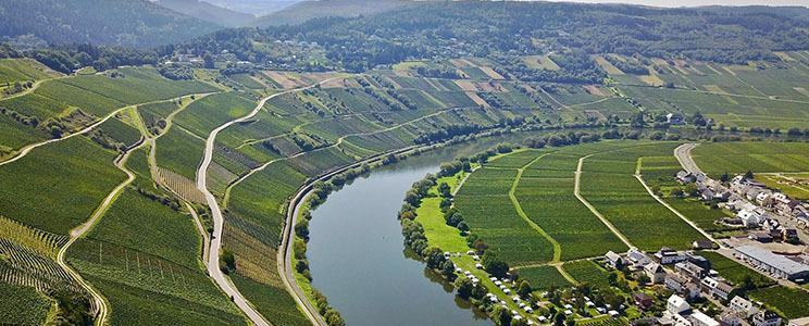 Weingut Clüsserath-Eifel