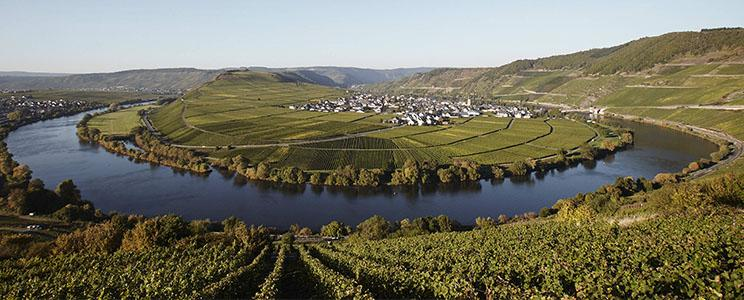 Weingut Ansgar Clüsserath