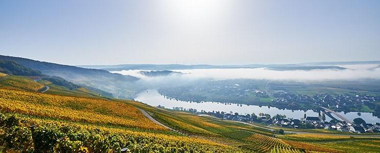 Weingut Reichsgraf von Kesselstatt