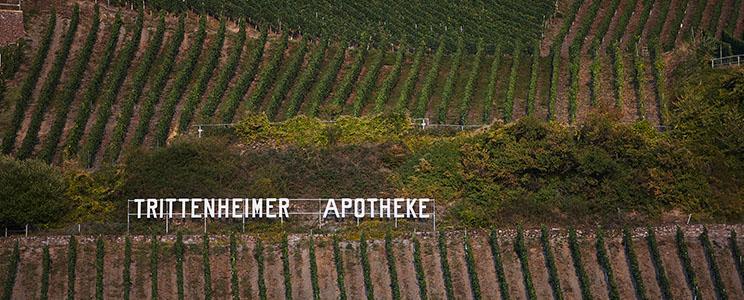 Weingut Ansgar Clüsserath: Riesling