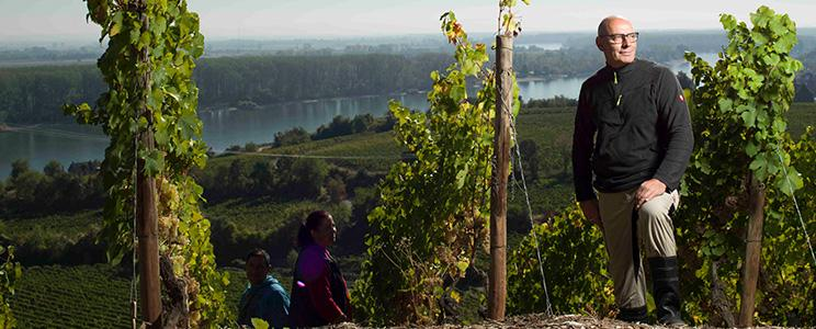 Weingut Gehring: Riesling