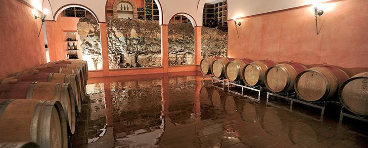 Panoramaweingut Baumgärtner: Weißwein