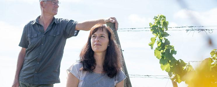Weingut Klaus und Judith Wendel