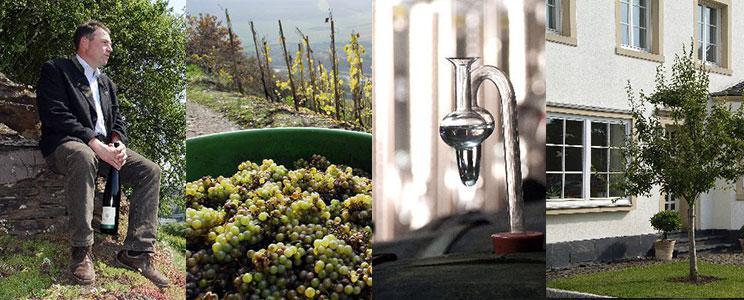 Weingut Johann Peter Mertes