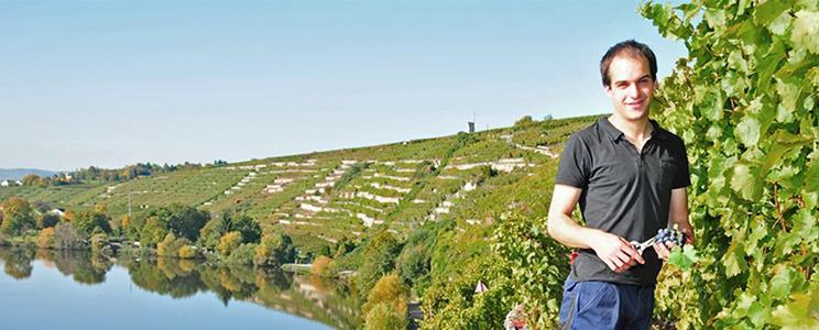 Weingärtner Stromberg-Zabergäu