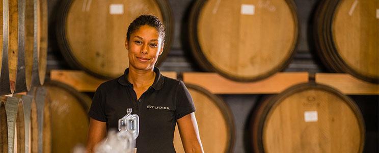 Weingut Studier: Rotwein