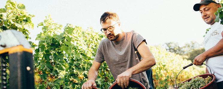 Weingut Vinçon-Zerrer