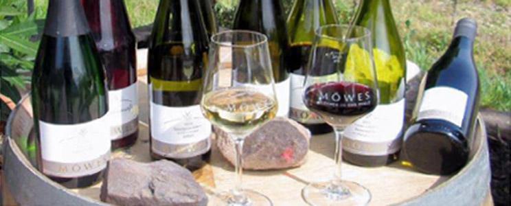 Weingut Möwes: Qualitätswein (Seite: 2)