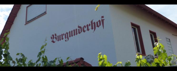 Weingut Burgunderhof Merkel