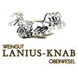 Lanius-Knab