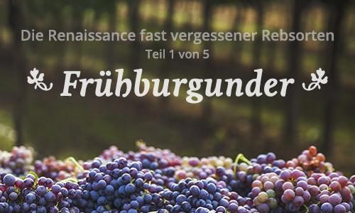 Banner Frühburgunder